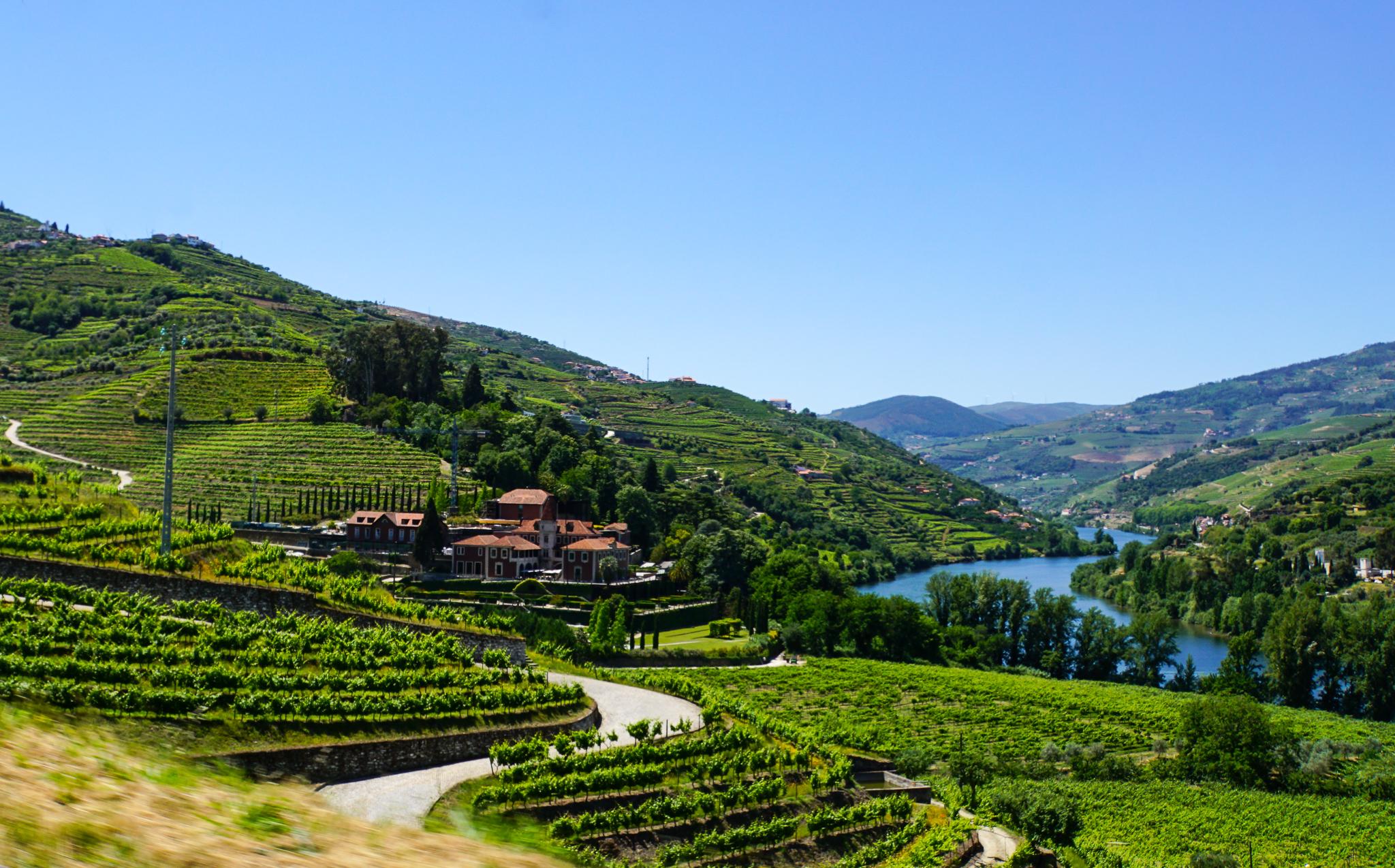 Roadtrip i Douro Valley