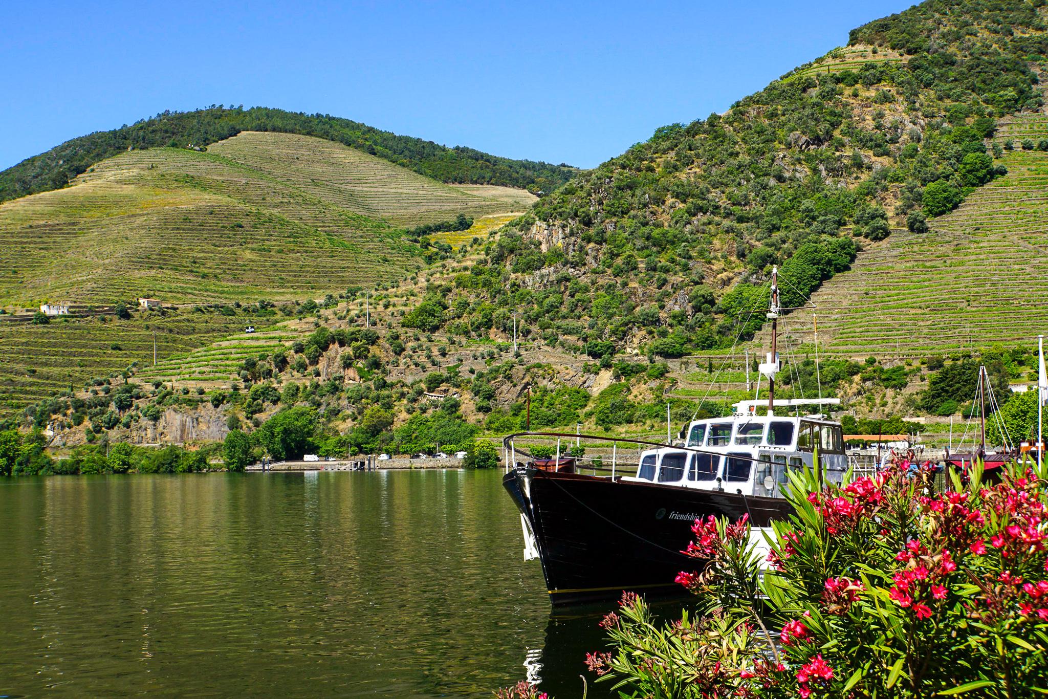Makalös utsikt i Douro Valley