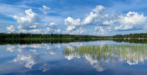 Sommarvykort från Angsjön